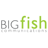 BigFish Communications
